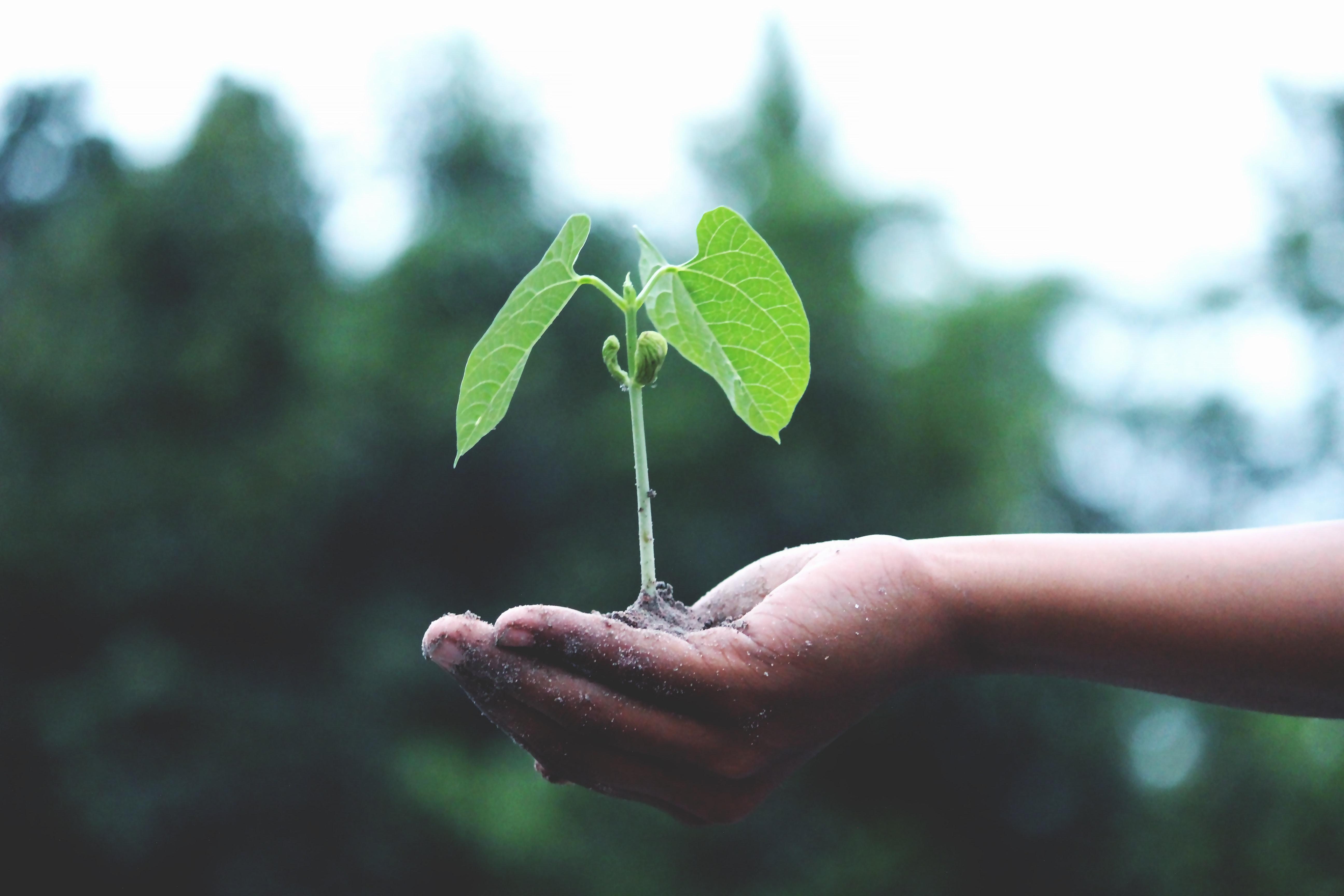 Kom op tegen Kanker sluit zich aan bij 'Citizens for Science in Pesticide Regulation'